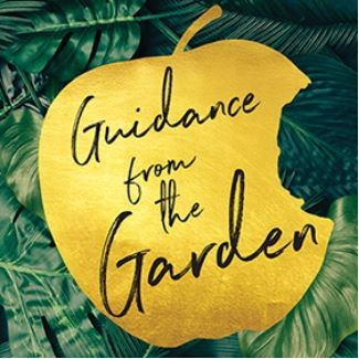Guidance from the Garden GGDVD