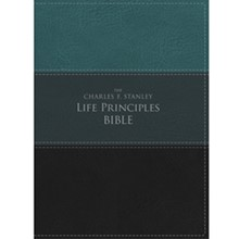 NIV Bible (Large Print) - Green/Black Leathersoft LPNIVGBL