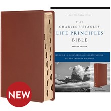 NIV Bible 2nd Edition (Comfort Print; Indexed) - Brown Genuine Leather BBNIVL5621