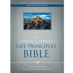 NIV Bible (Large Print) - Black Leathersoft LPNIVBLL